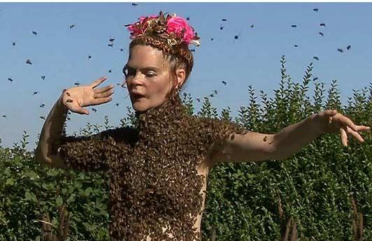 Cho 12.000 con ong đậu trên cơ thể - 1