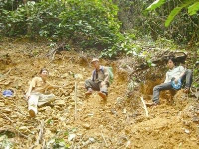 Kiếp phu trầm: Sống nơi rừng thẳm - 3