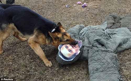 Triều Tiên tung clip chó cắn hình tướng HQ - 1