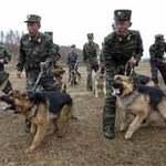 Tin tức trong ngày - Trung Quốc trách móc Triều Tiên