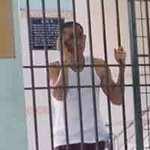 Tin tức trong ngày - Đang khỏe, bị bắt vào bệnh viện tâm thần