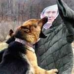 Tin tức trong ngày - Triều Tiên tung clip chó cắn hình tướng HQ