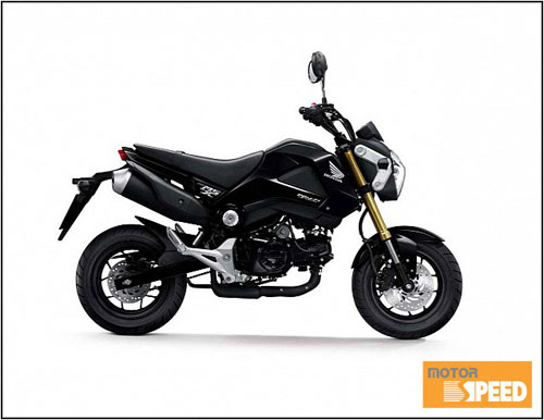 Honda MSX 125 dành cho người đam mê xe tay côn - 2