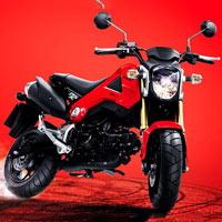 Honda MSX 125 dành cho người đam mê xe tay côn