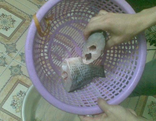 Hà Nội: Lại phát hiện cá có 2 khoang bụng - 2