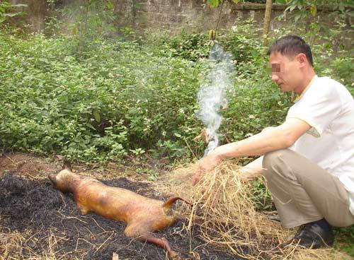 Khách Tây rùng mình với thịt chó Việt - 1