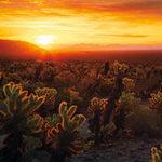 Du lịch - Những lời khuyên cho bộ ảnh du lịch siêu đẹp