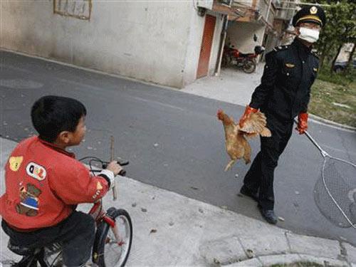 TQ: Số ca nhiễm cúm H7N9 tăng lên 60 người - 1