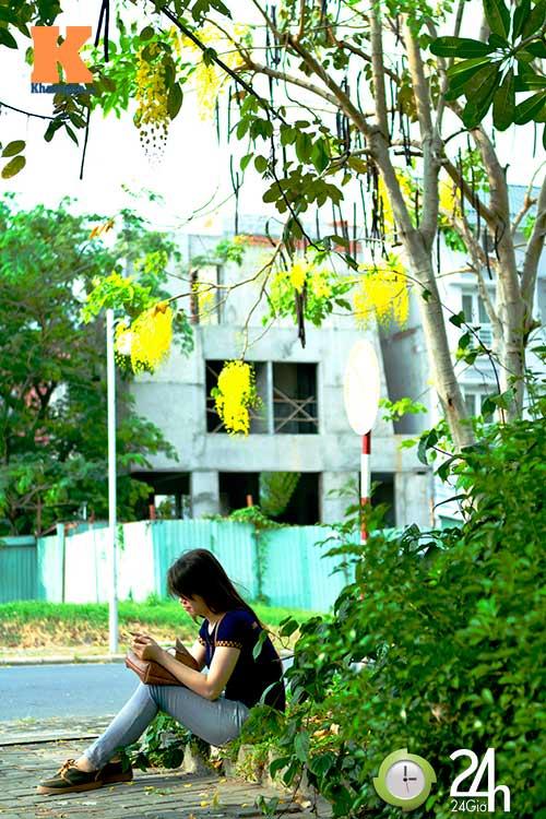 Đến Sài Gòn ngắm hoa hoàng yến - 8