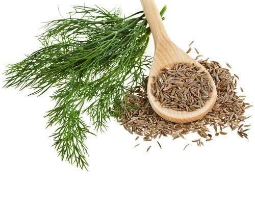 5 loại thảo dược có tác dụng chữa bệnh - 4