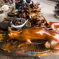 """""""Người Việt không ăn thịt chó mới là lạ"""""""