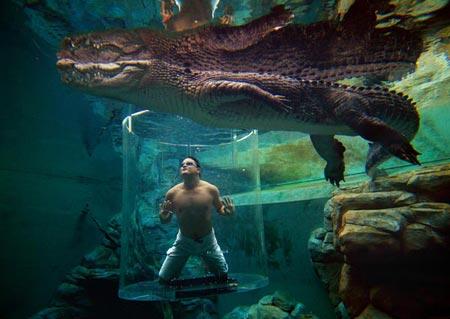 12 bể bơi lung linh nhất hành tinh - 12