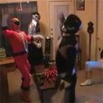 Harlem Shake: Điệu nhảy sành điệu