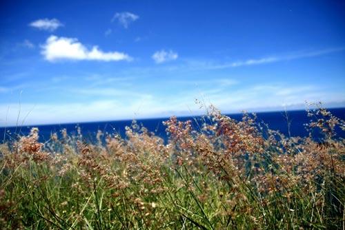 Khám phá dọc cực Đông xanh thẳm - 3