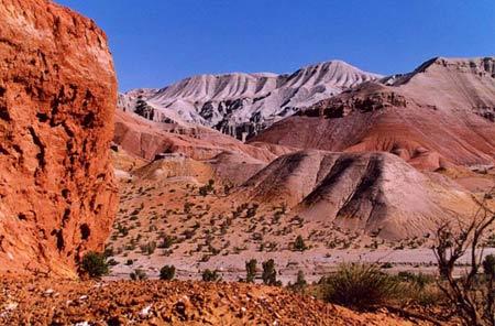 Ấn tượng khó quên nơi hẻm núi Charyn - 2