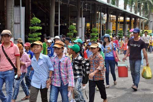 TPHCM: Tưng bừng lễ Giỗ Tổ Hùng Vương - 6