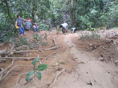 Xé rào, leo dốc dâng hương đền Hùng - 8
