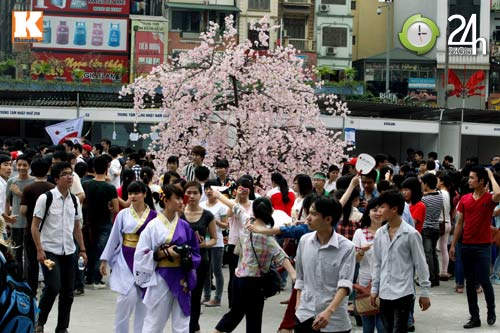 Sôi động Lễ hội hoa Anh đào giữa lòng thủ đô - 1