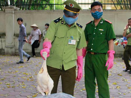 Bắt giữ 1 tấn gà và nội tạng nghi từ TQ - 1