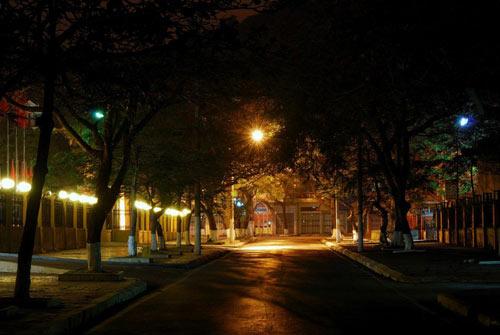 Lặng ngắm đêm Hạ Long đẹp mê hồn - 9
