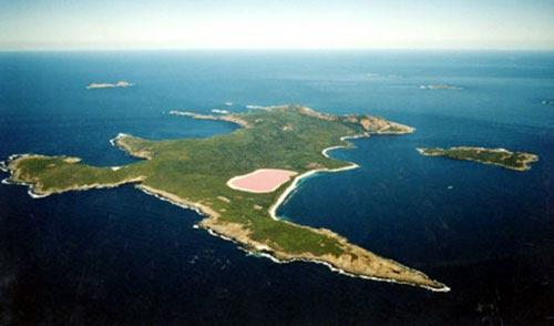 Đẹp ngỡ ngàng hồ hồng ở Úc - 4