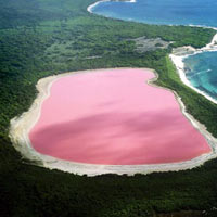 Đẹp ngỡ ngàng hồ hồng ở Úc