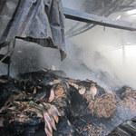 Tin tức trong ngày - Cháy xưởng giấy, cả khu dân cư tháo chạy