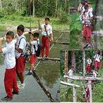 Phi thường - kỳ quặc - Đến trường trên cây cầu sinh tử
