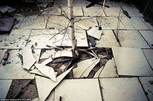 Thảm họa Chernobyl: 27 năm vẫn bàng hoàng - 13