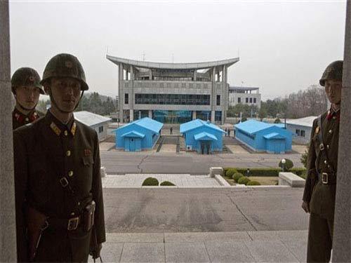 Binh sĩ Triều Tiên xắn quần làm ruộng