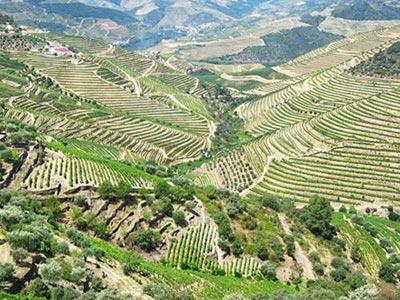Mê đắm 10 'viên ngọc' du lịch ở Bồ Đào Nha - 8