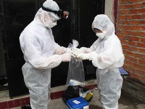 Cách nào chống dịch cúm A/H5N1? - 1