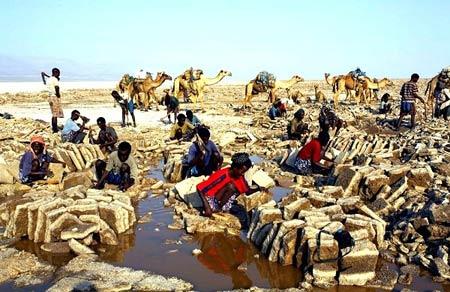 Chiêm ngưỡng đồng muối đẹp như tiên cảnh - 4