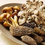 Sức khỏe đời sống - Ăn nấm thế nào cho đúng ?