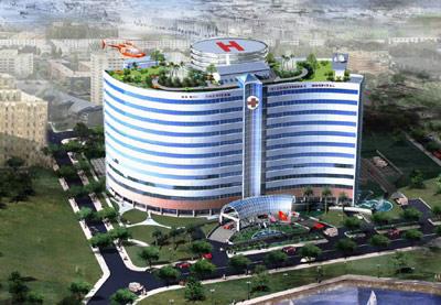 Bệnh viện 5 sao thành... nhà hoang ở HN - 1
