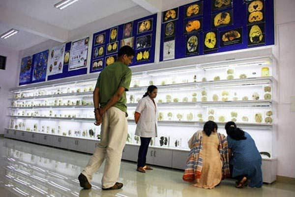 Rùng rợn bảo tàng Não ở Ấn độ - 1