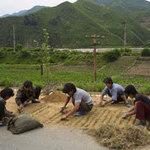 Tin tức trong ngày - Triều Tiên: Khó khăn bủa vây người dân