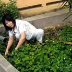Thị trường - Tiêu dùng - Nuôi gà trên sân thượng, trồng rau ở cơ quan