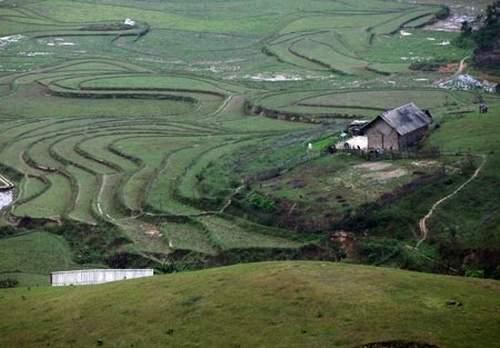 Mê mẩn vẻ đẹp cao nguyên Đồng Cao - 6