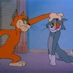 Video Clip Cười - Video funny TOM & JERRY: Kẻ thù mới