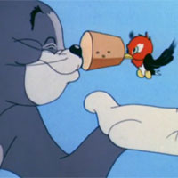 Video funny TOM & JERRY: Chim gõ kiến