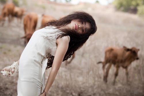 Đồng Lan hoang dại trong album mới - 5