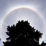 Tin tức trong ngày - Quầng sáng lạ trên bầu trời Đà Lạt