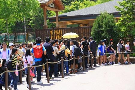 Vòng quanh thế giới tại Công viên Everland – Hàn Quốc - 7