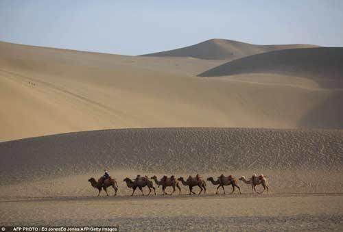 TQ: Ốc đảo tí hon 2.000 tuổi giữa sa mạc - 4