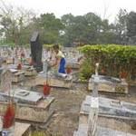 Tin tức trong ngày - Những đứa trẻ mưu sinh ở nghĩa trang