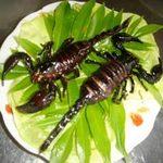 Tin tức trong ngày - Liên Hợp Quốc: Ăn côn trùng để giảm đói nghèo
