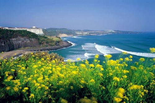 Thiên đường tình yêu Hàn Quốc làm thổn thức triệu trái tim - 3