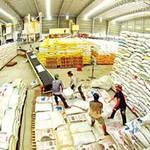 Thị trường - Tiêu dùng - Tạm trữ lúa gạo: Không ai được lợi!