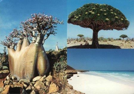 8 điểm đến có vẻ đẹp siêu nhiên trên trái đất - 3